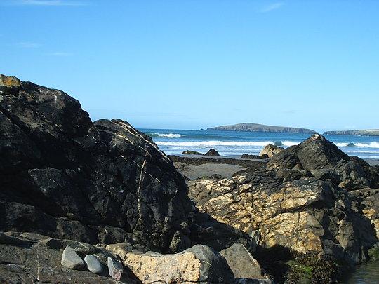 Cardigan Bay (cardigan bay)