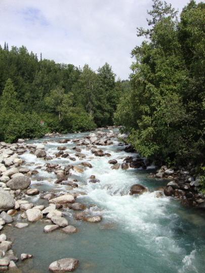 Coastal Alaska: Glacial Stream