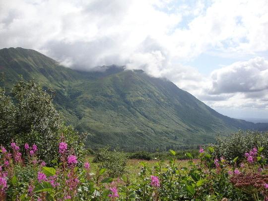 Edge of Chugiak:  Coastal Alaska Southcentral