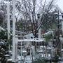 The Winter Garden under snow.