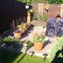 Garden_newquay_holidays_001
