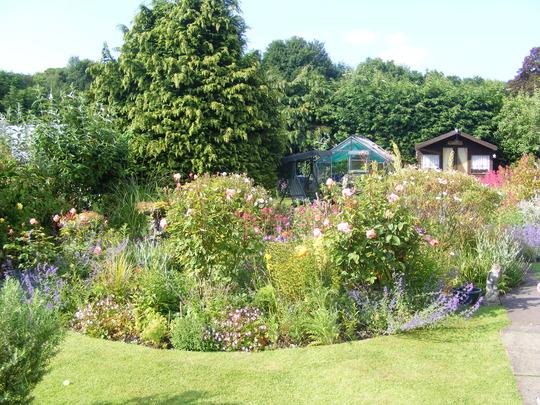 summer 09 in my back garden