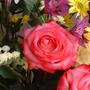 Flowers_0029