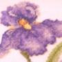 My Cross Stitch Iris