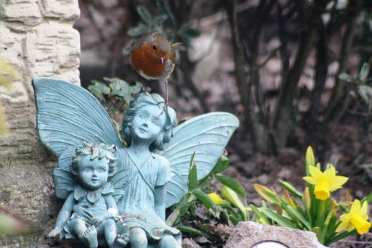 Fairy, fairy worrying!
