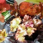 More_garden_stuff..19th_mar_10_001
