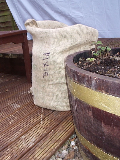 "Ship's supplies - potato ""Pixie"", in plastic compost bags, turned outside in, then placed in hessian sacks to look more ""authentic""."