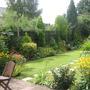 Garden_aug_08_002