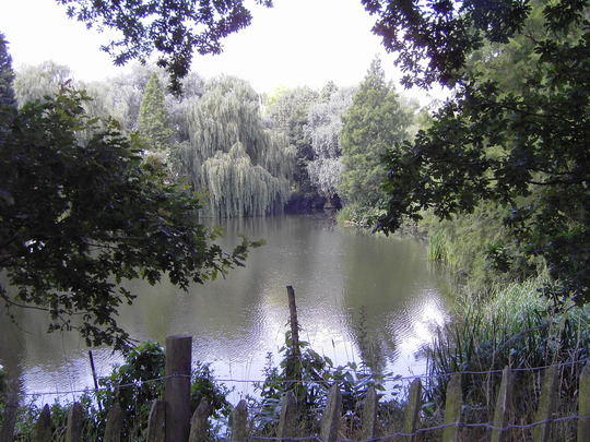 Gardens_002.jpg