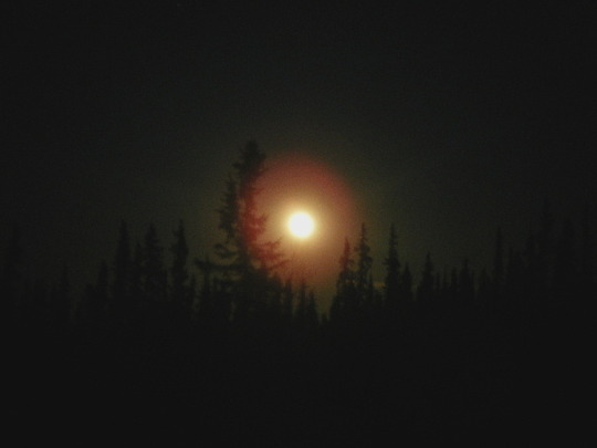 Full Moon in the Evening
