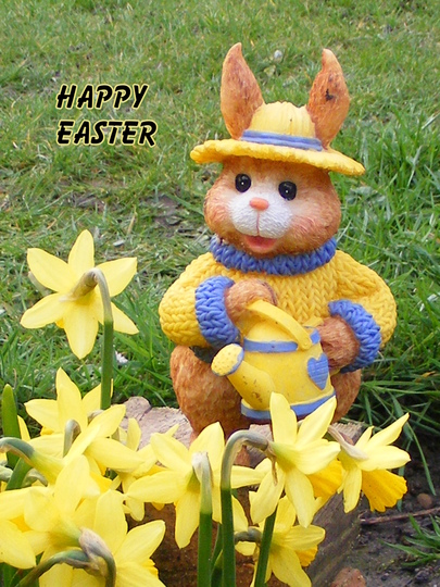 Wishing you all a wonderful Easter..and happy gardening