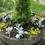 Heb Garden Tub