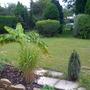 Front part of garden