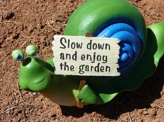 Snail Message