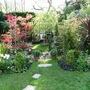 Back garden Mon 28 April 08