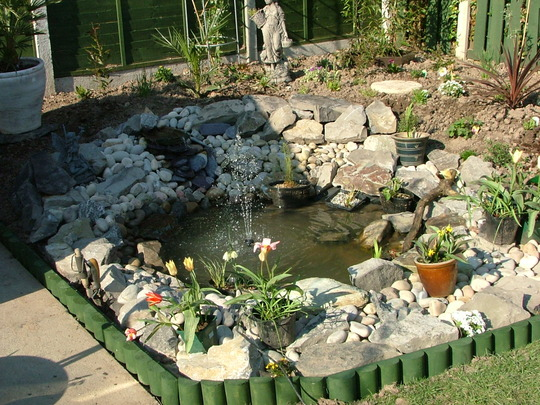 finished pond