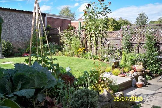 garden july 09