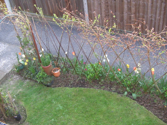 new  borders to this front garden