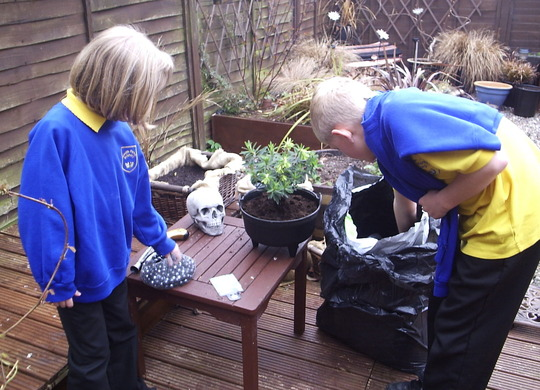 "Planting our Euphorbia ""Black Pearl""  (1)"