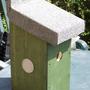 Nestbox1