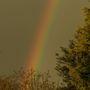 Rainbow this evening
