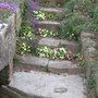Steps to the stream.