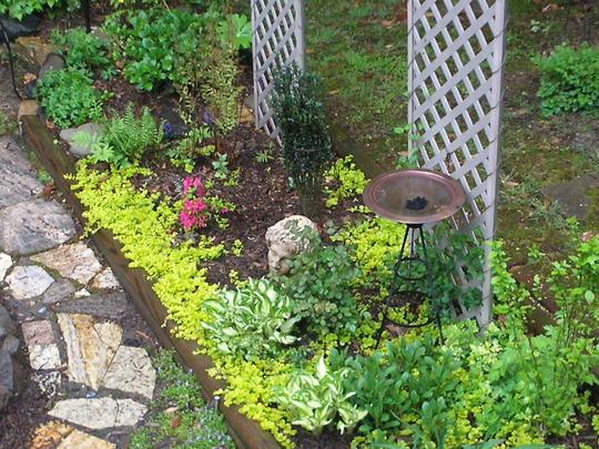 Spring2010_SideBox.jpg
