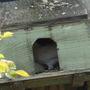 Nesting_box