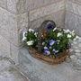 New flowers for front door basket.