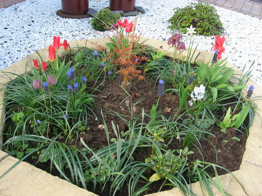Raised front floral bed