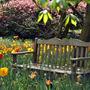 Spring at