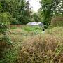 Neighbour's garden September 2008