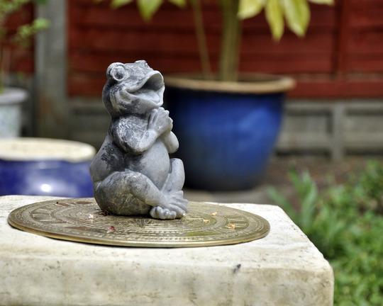 Sundial frog;)