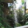 Glasshouse waterfall