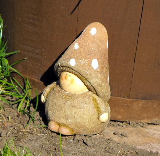 Little Mushroom Man