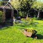 Spring Colour In Big Circle Border&Wheel Barrow