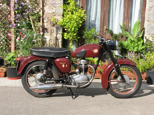 Lemom tree + classic bike combination