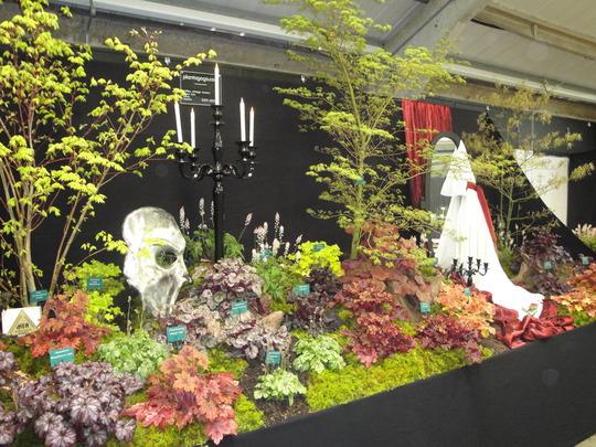 Harrogate flowers show 2010