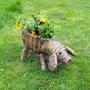My New Piggy Planter Full Of Pansies :)