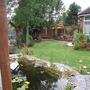 Back garden year 1