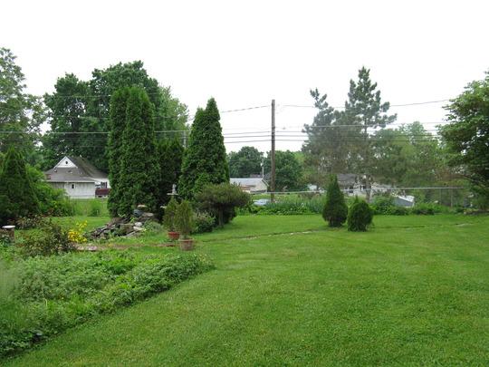 neighbor barbra's yard