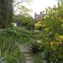 Yellow Book Garden