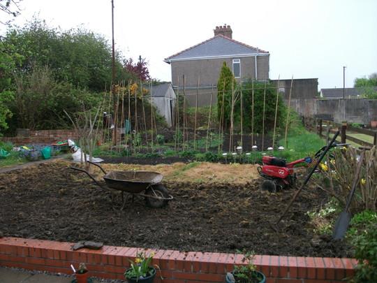 My Friend's Garden