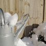 Watering Can in Ice