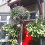 Garden_pics_2007_034