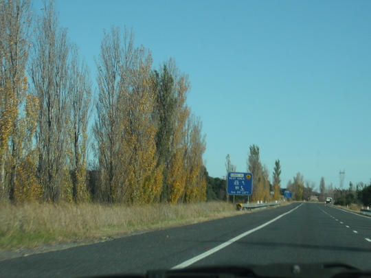 Canberra Colour! 1