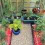 Garden_3_003