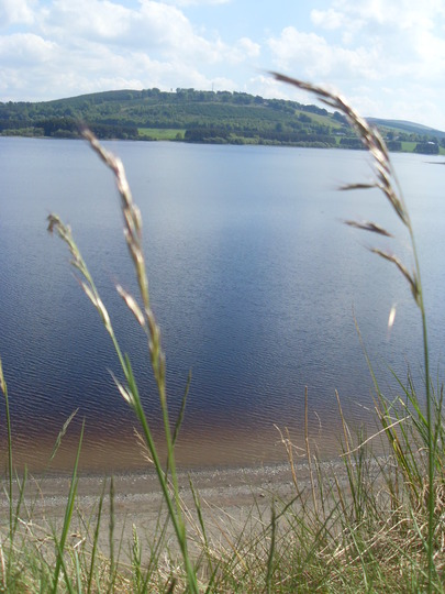 Blessington lake co. Wicklow
