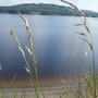 Blessington_lake