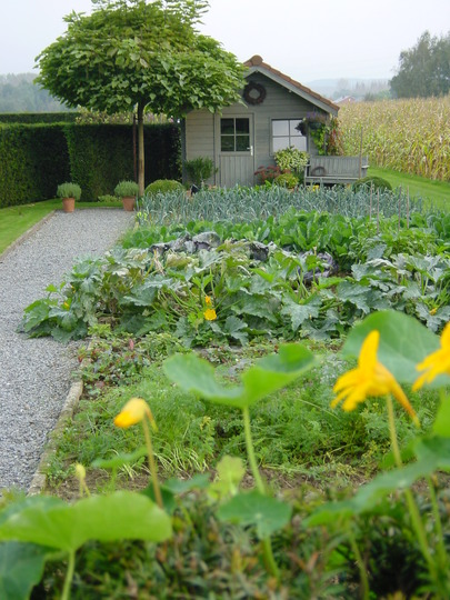 vegetable garden at our neighbours (2004)